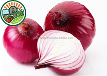 Top Sales Frozen Vegeable From Vietnam With Lower Price and Higher Quality ,Welcome to Inquiry Red Onion