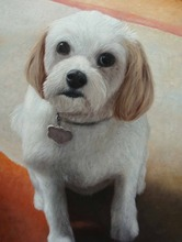 Customize Pet Dog Puppy Portrait Painting and Drawing Services