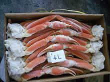 Premium and Popular live crab export crab with hokkaido made in Japan