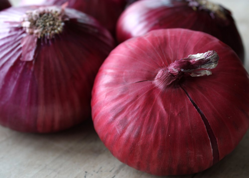 Whole sale fresh red onions in bulk in Pakistan in high quality onion price ton types red onions lowest price fresh red onion