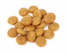 Best Quality Natural Pet Food Supplements Private Label Pet Products