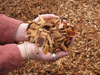 Bulk Wood Pellets and Wood Chips for Sale From Ukraine