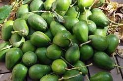 Fresh Avocados,Fresh Pineapples,Frozen Strawberries,Fresh Limes,Fresh Dragon Fruits,Fresh Guava. Fresh Apples,Fresh Oranges,