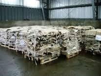 Quality Wet and Dry Blue Salted Donkey Hides For Export