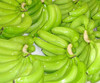 Fresh banana for export/ Best quality Cavendish banana from Viet Nam