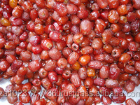 High quality red dates supplier VERY HIGH GRADE Hot Sales