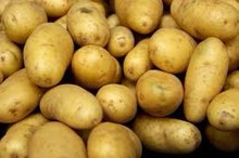 fresh potatoes export