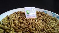 Barley Premium Quality
