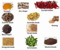 Names All Indian Spices