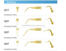 Supragingival scaling tips,woodpecker brand,G1T,G2T,G3T,G4T,G5T