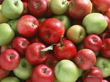 2015 Greece Fuji Apple Supplier Fresh Red,Gold Apple