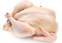 Halal Chicken Meat,Halal Frozen Whole Chicken