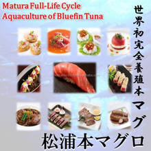 Matsuura bluefin tuna take cost than sea freight rates to export live but to provide the highest of taste.