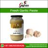 fresh garlic paste best price ,chili paste,ginger paste