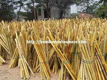 Decorativa de bambú, de color de bambú