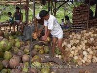 dry coconut price