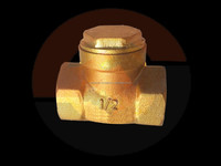 Brass spring loaded lift check valve