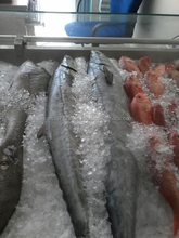 king fresh fish sea food kannad (Omani)