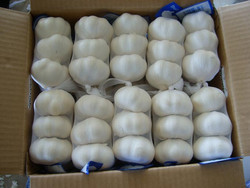 2015 Natural White Fresh Garlic For Sale