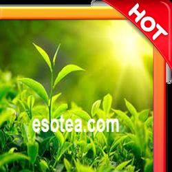 Green tea extract natural
