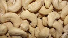 Cashew Nut Best Price