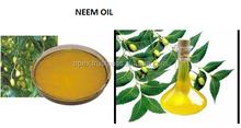 Certified Neem Oil For Export - Pesticide/Insect Controller