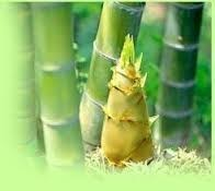 Bamboo shoot Extract Silica 45% 55% 65% & 75%