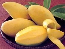 Fresh Mango (Ripe Mango)