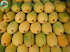 Frozen Tropical Passion Fruit Pulp, Mago Stick, Mango Chunk and Many Flavours From Viet Nam Mango