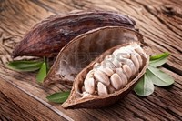 dry cocoa pods without seeds