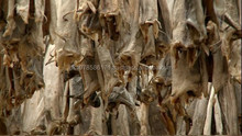 Stockfish, Stockfish Head, Stockfish Cod From Norway For Sale