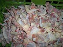 Halal Frozen chicken wings