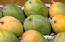 Indian Export Quality Kesar Mangoes !