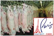 Frozen Lamb Carcass Halal Certified
