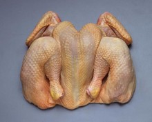 Processed Frozen Whole Chicken (Grade A)