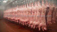 Frozen Pork Legs and labs(Trotters) and also frozen lamp trotters,High quality! cheap wholesale frozen meat cuts pork with low p