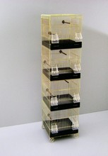Pet Bird Canary Four Storeyed Brass Wire Cage