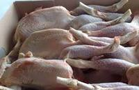 frozen whole chicken brazil (competitive price)