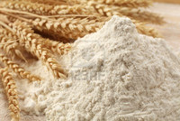 Quality Low Price Wheat Flour Suppliers For Sale