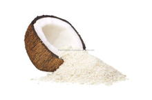 Good Price Fresh Coconut for Export from Vietnam/ Fresh Young Coconut