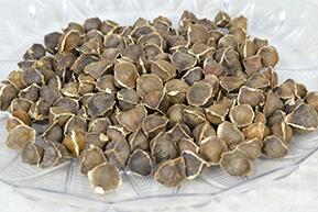 Seed 5