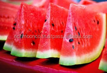 Water melon with sweet taste and the best price from Vietnam
