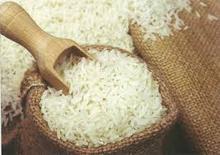 JAPANESE LONG GRAIN FRAGRANT WHITE RICE New Crop Premium Thai Long Grain White Rice 5% (4% broken) for sale