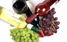 ITALIAN WINE EXPORT