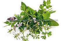 Wholesaler of Freeze Dried Herbs from India