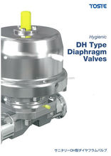 ASEAN buyer wants to import dependable diaphragm valve for plant construction machinery