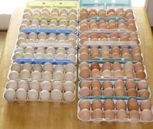Fresh Broiler Eggs , Halaal Whole Chicken for Arab market
