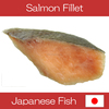 High quality vacuum pack frozen fresh wild salmon , mackerel also available