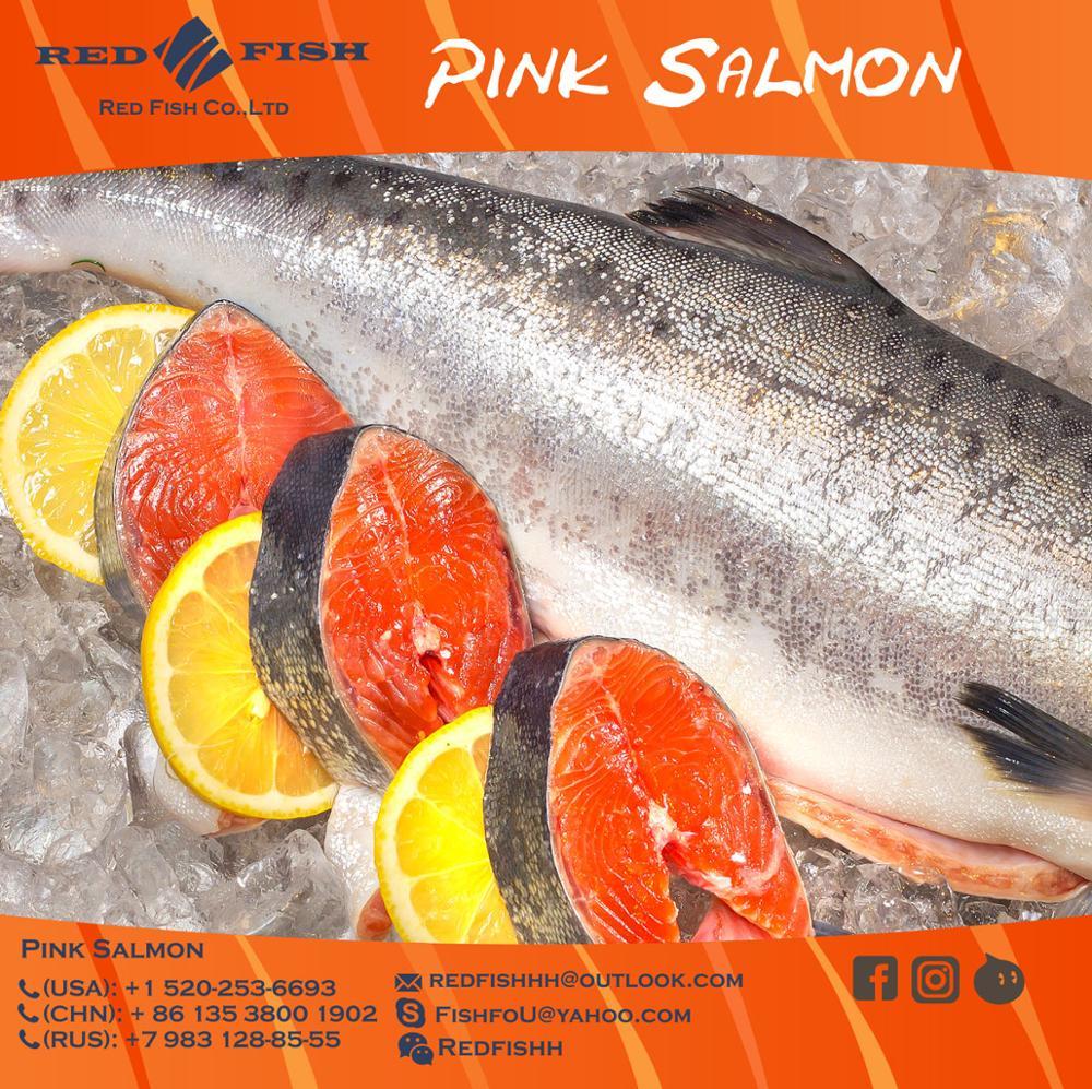 pink-salmon-1.jpg